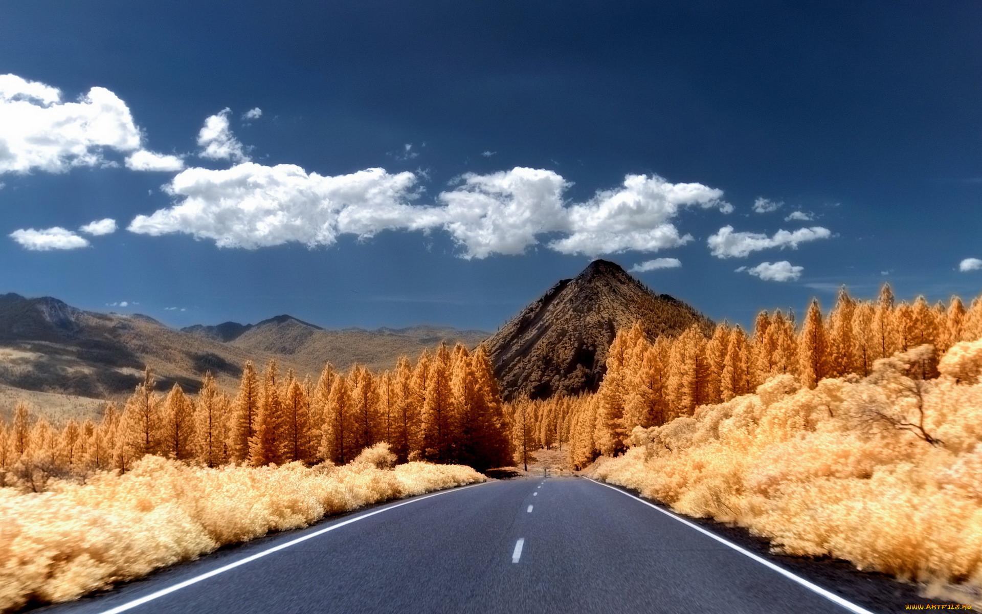 способ картинка с природой и дорог разрезать вдоль хребта